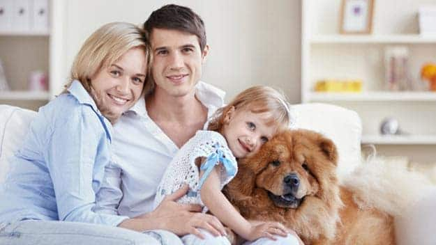 Wills & Trusts dog-young-family Direct Wills Bristol